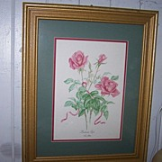 Pretty Vintage  Framed Botanical Print  Madame Rose Ann Gethen