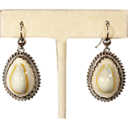 SALE Antique Victorian Cowry Shell Earrings in Silver, c. 1880