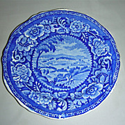Rare Dark Blue American Historical Staffordshire Plate from Clews Cities Series ~ Washington 