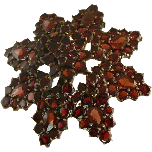 Garnet Star Burst Brooch in 14k Yellow Gold.