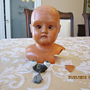 Schutz-Mark German Celluloid Doll Head for Project