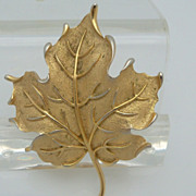 Crown Trifari Maple Leaf Gold Metal Brooch