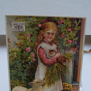 Advertising Trade Card &quot;Pearline&quot; Wash Soap