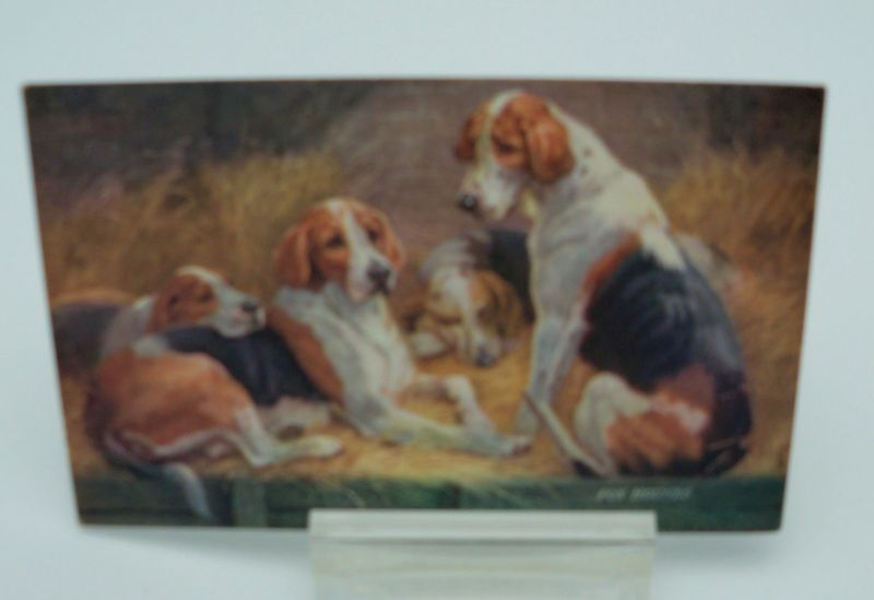 Tuck's Oilette Postcard  &quot;The Friends of Man&quot; Fox Hounds