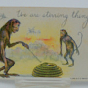 Postcard Monkeys Teasing A Snake