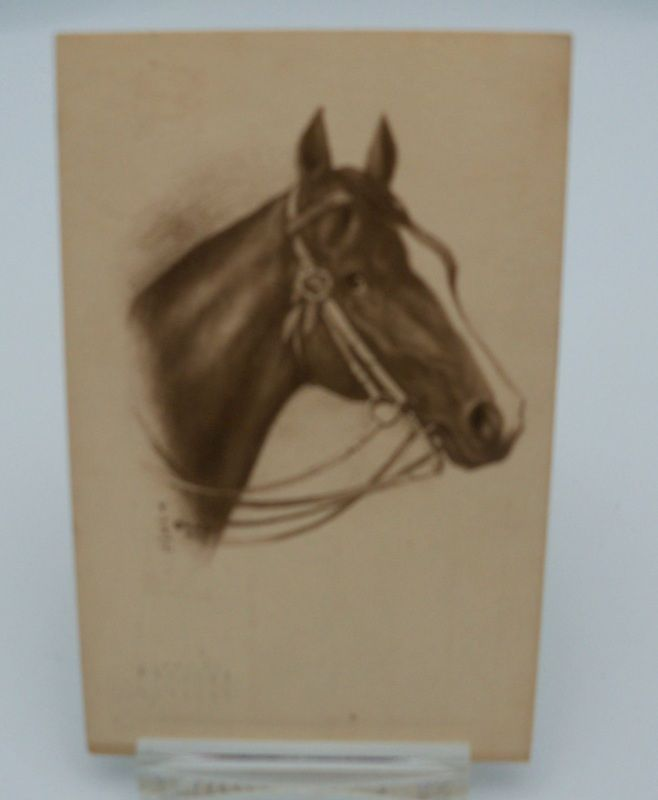 Artist Signed Horse Head Profile Postcard