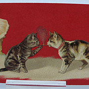 Smoking Cats Postcard