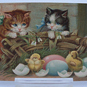 Easter Postcard Cats Looking at Baby Chicks