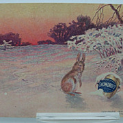 Advertising Postcard  &quot;Snowdrift&quot;  Rabbit in Snow