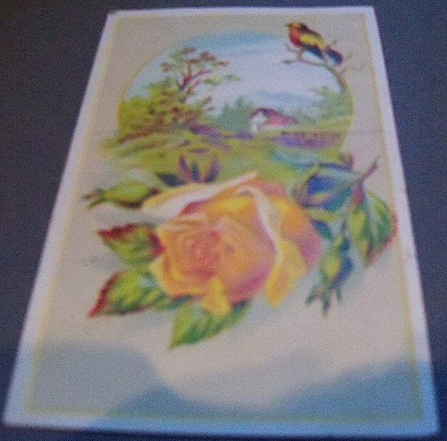 Two Lion Coffee Advertising Trade Cards with Roses