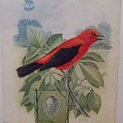"Advertising Trade Card Singer Sewing Machine ""Song Bird"""