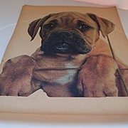 Full size Victorian Diecut of  a Sad Faced Dog