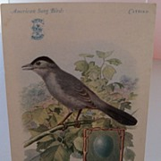 "Advertising Trade Card ""American Song Birds"" Singer"