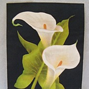 Advertising Trade Card Calla Lillies on Black