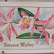 Postcard Floral with Sincere Wishes