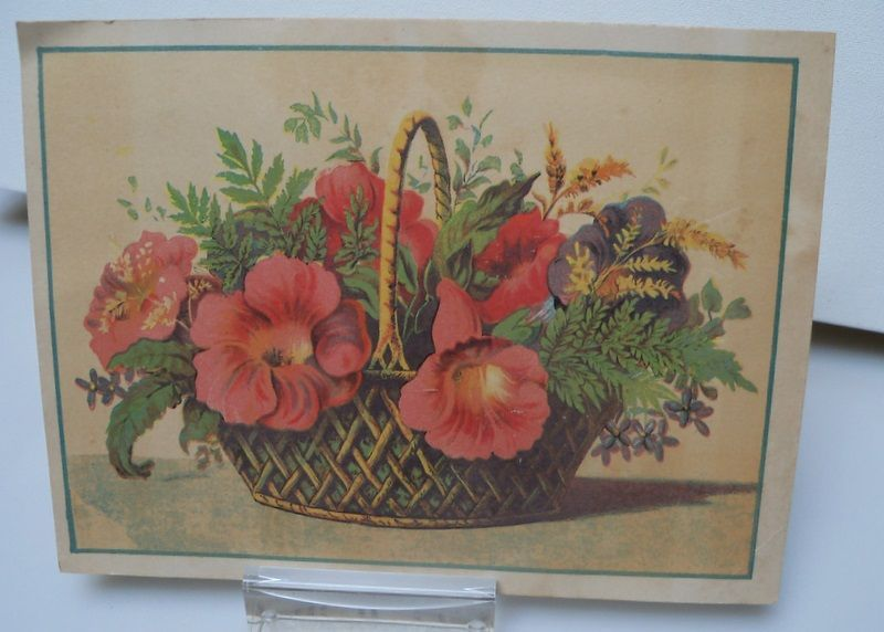 Large Advertising Trade Card for Star Soap