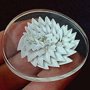 SALE Vintage LUCITE Brooch Reverse Carved MUM Flower Translucent Clear Lucite c.1940 to 1950's