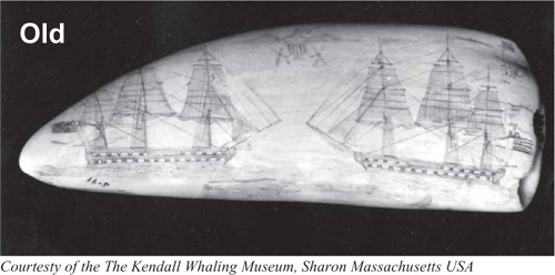 Scrimshaw and other nautical carvings
