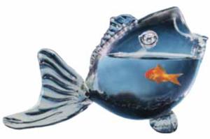 Fishy Fish Bowl