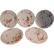 SOLD 7  Haviland Limoges Luncheon Plates Pattern: H764