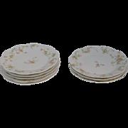SALE Haviland Limoges The Princess  8 Desert Plates Made In France