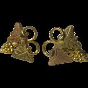 Vintage Black Hills Gold Filled 1/20 12K Screw Back Earrings Leaf & Grape