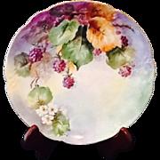 Hand Painted Heirloom Plate MZ Austria