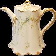 Antique Haviland & Co Ranson Teapot With Floral Sprays