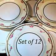 Set of 12 Spode Dinner Service Plates with Pink Roses on a Cream Color Ground