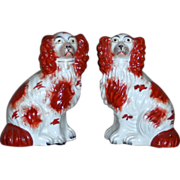SOLD Pair of Early Victorian Red and White Staffordshire Comforter Spaniel Dogs (on reserve)