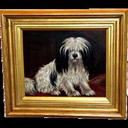SALE Portrait of a Havanese Dog by A.G. Walker