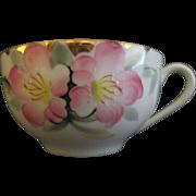 Noritake Ten Porcelain Cups Azalea Pattern