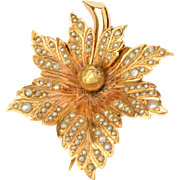 Antique Victorian brooch gold and natural seed pearls