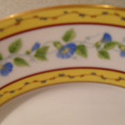 Limoges Ceralene Raynaud Morning Glory Spray Plate 6 1/2