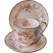Paragon Victoriana Rose Pink Teacup Saucer Trio