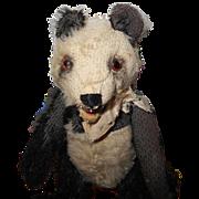 """Steill Teddy Panda 6"""" and worn"""
