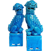 Pair Large Turquoise Chinese Foo Dogs Vintage 15""
