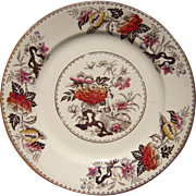 "Victorian Era 8"" Plate in Bullfinch Pattern by Wedgewood"
