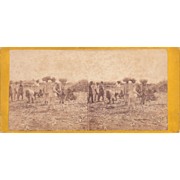 1860 Stereoview of Cuba #173 Sugar Ready for Market