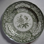 REDUCED Green Spode Floral Pattern Plate