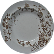 Spring soup plate by Wm. Grindley, Aesthetic pattern, daisies
