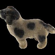 SOLD Early small velvet dog
