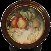 REDUCED Walnut Framed Thomas Sevres Bavaria Hand Painted GRANADA Fruit Plate