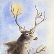 Miralu Fort Worth Texas Artist Deer Art Watercolor
