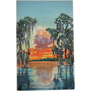 SALE Sunset on a Florida lake Vintage NOS New Old Stock Postcard