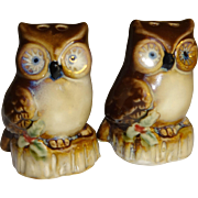 SOLD Mini Christmas Owls Salt and Pepper Shakers