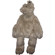 "Adorable Very Large OOAK Polar Bear ""Cody"" Artist Kristine Lambrix 24"" Hump On"