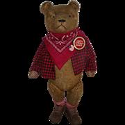 """Adorable Antique Large Mohair Bear 26"""" Tall Circa 1900's"""