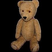 "Large Vintage Mohair Winnie The Pooh Teddy Bear Excelsior Stuffed 21""Circa 1920's"