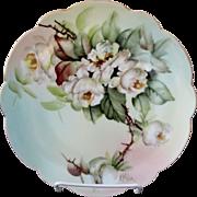 """Limoges H.P. Ester Miler 8 ½"""" Plate w/ White Roses- signed """"E. Miler"""""""